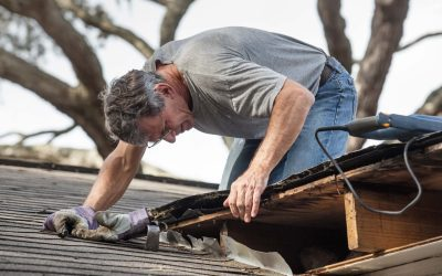 4 Common Signs of Structural Problems in Your Home